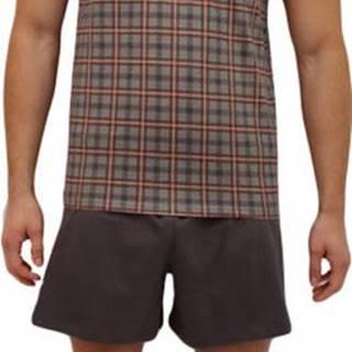 Pánské pyžamo  šedé