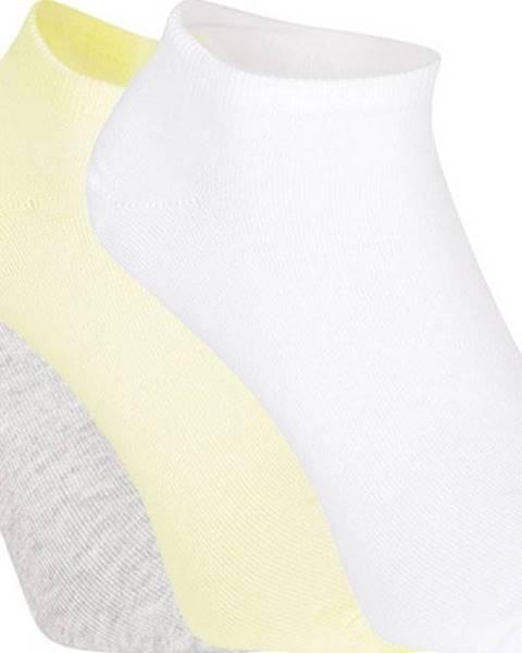 Vícebarevné spodní prádlo puma