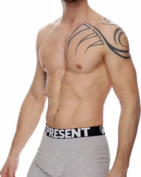 Šedé spodní prádlo Represent