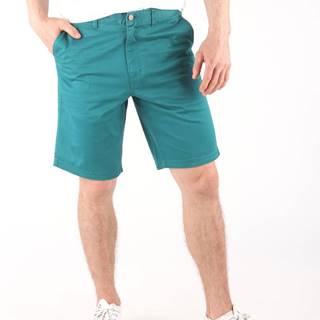 Oakley Chino Kraťasy Modrá Zelená