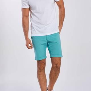 Šortky  D2. Regular Sunfaded Shorts