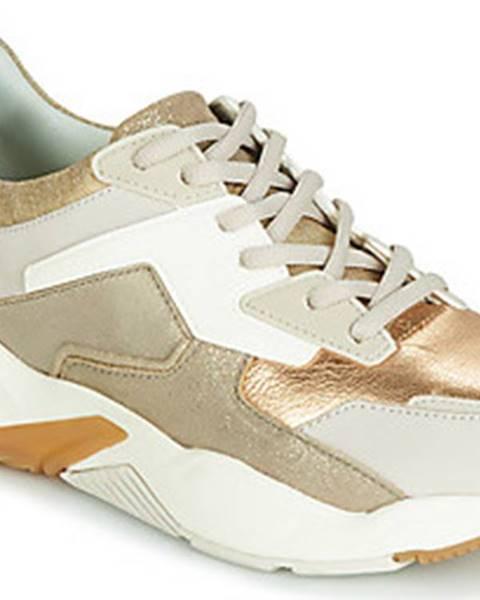 Zlaté tenisky Timberland