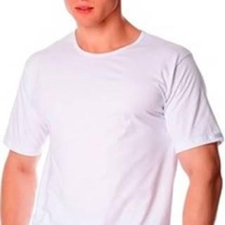 Cornette Trička s krátkým rukávem Pánské tričko 202 new white ruznobarevne