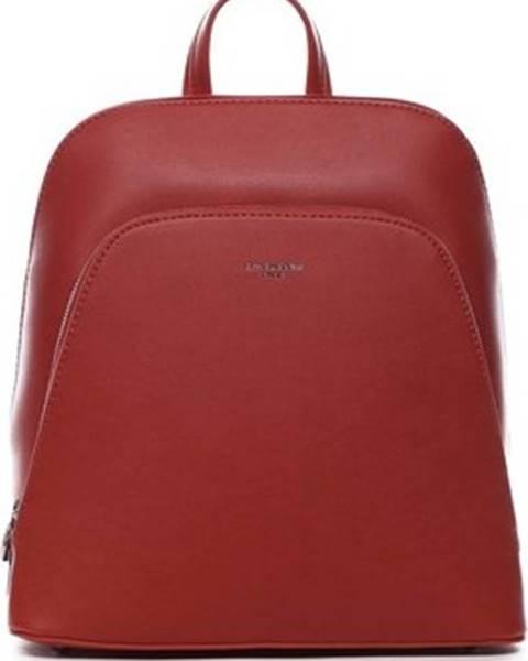 Červený batoh David Jones