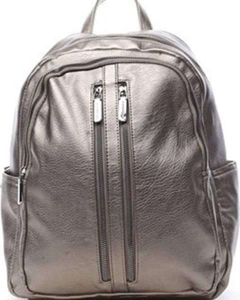 Stříbrný batoh Silvia Rosa