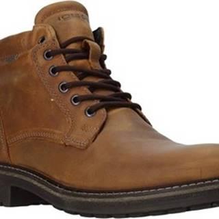 IgI CO Kotníkové boty 4122422 Hnědá